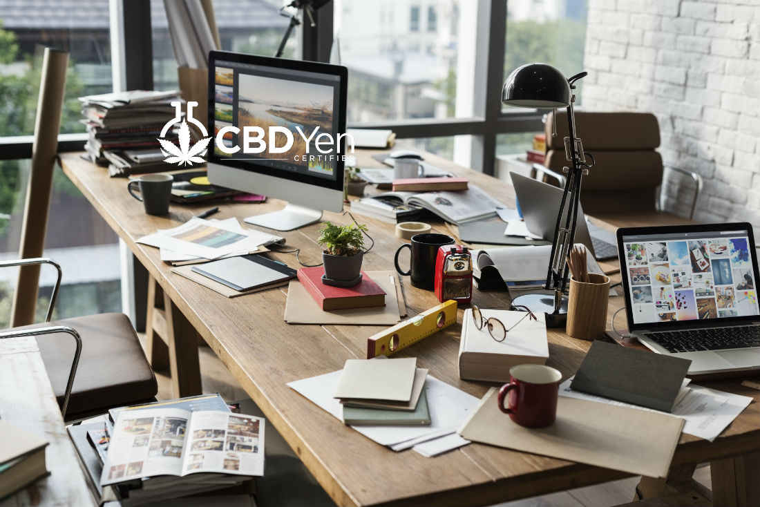 Read more about the article Latest CBD News